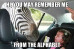 Hi, You May Remember Me From The Alphabet