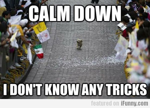 Calm down, I don't know any tricks