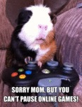 Sorry Mom, But You Can't Pause Online Games!