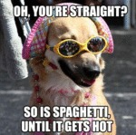 Oh, You're Straight? So Is Spaghetti...
