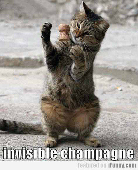 Invisible Champagne