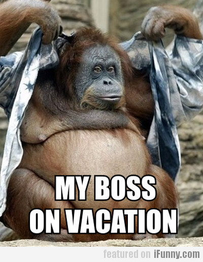 My Boss On Vacation