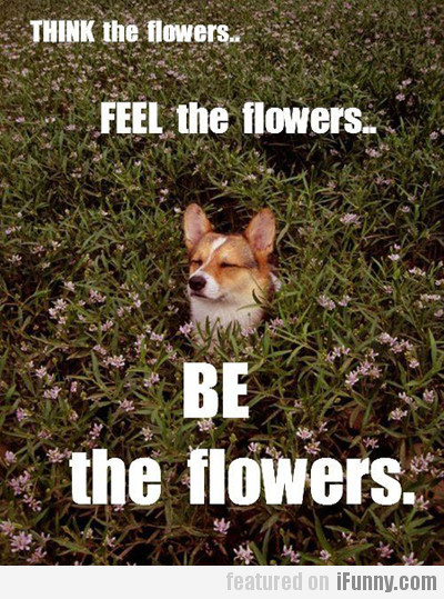 Be The Flowers...