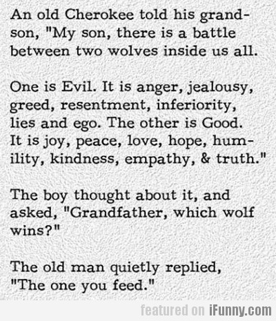 An Old Cherokee Told His Grandson...