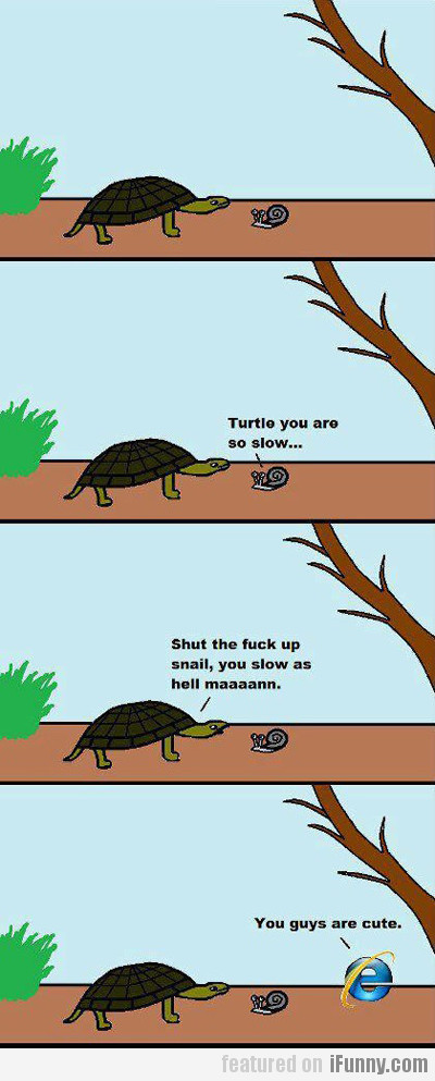 Turtle You Are So Slow...