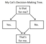 My Cat's Decision-making Tree