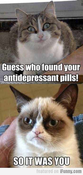 Guess Who Found Your Antidepressant Pills?