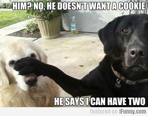 Him? No, He Doesn't Want A Cookie...