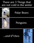 There Are 3 Things That Are Not Cold In Winter