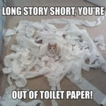 Long Story Short, You're Out Of Toilet Paper!