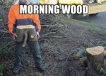 Morning Wood, Literally