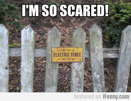 electric fence... I'M SO SCARED!
