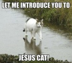 Let Me Introduce You To Jesus Cat!