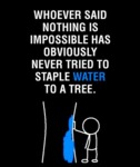 Whoever Said Nothing Is Impossible…