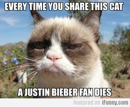 Every Time You Share This Cat…