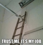 Trust Me, It's My Job