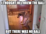 I Thought He Threw The Ball…