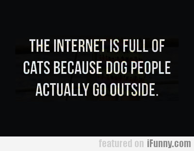 The Internet Is Full Of Cats Because…