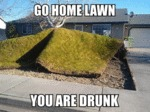 Go Home Lawn You Are Drunk