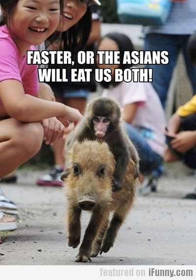 Faster, Or The Asians Will Eat Us Both!