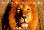Not Sure If National Geographic …