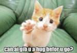 Can Ai Gib U A Hug Befor U Go?