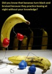 Did You Know That Bananas …