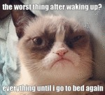 The Worst Thing After Waking Up?