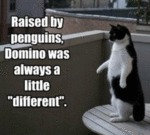 Raised By Penguins…