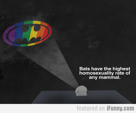 Bats Have The Highest Homosexuality Rate...