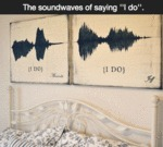 "The Soundwaves Of Saying ""i Do"""