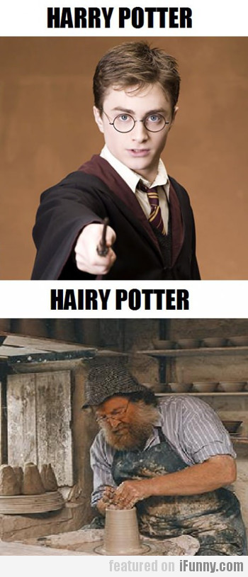 Harry Potter Vs. Hairy Potter