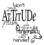 I Don't Have An Attitude Problem...