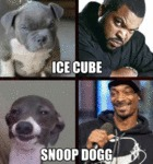 Ice Cube & Snoop Dogg