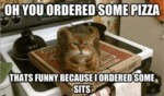 Oh You Ordered Some Pizza...