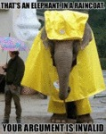 That's An Elephant, In A Raincoat
