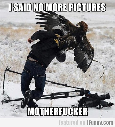I Said No More Pictures, Motherfucker