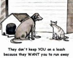 They Don't Keep You On A Leash Because They...
