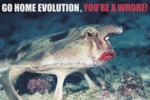 Go Home Evolution, You're A Whore!