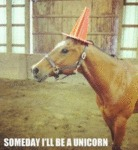 Someday I'll Be A Unicorn