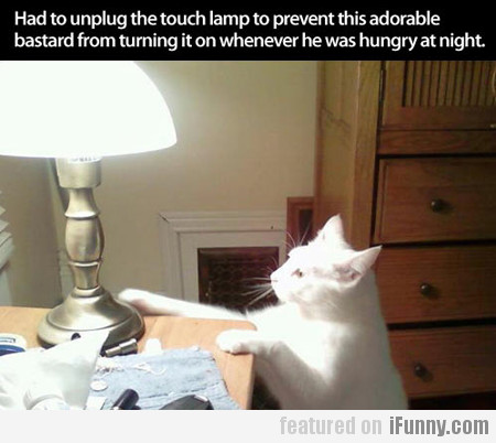 Had To Unplug The Touch Lamp To Prevent...