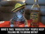 Who's This Moderation People Keep Telling Me To...