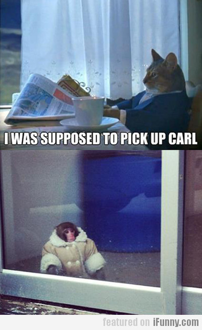 I Was Supposed To Pick Up Carl