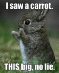 I Saw A Carrot. This Big, No Lie...