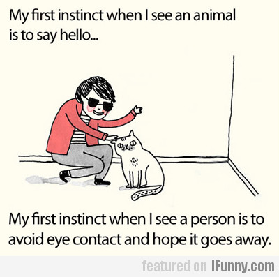 my first instinct when I see an animal is to...