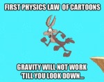 First Physics Law Of Cartoons...