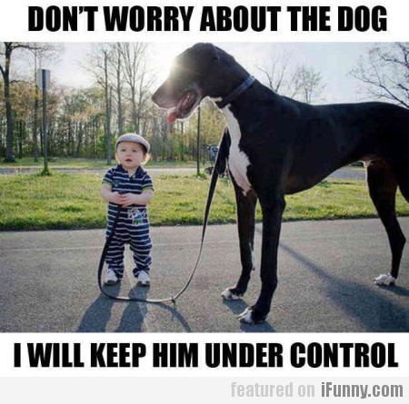 Don't Worry About The Dog...