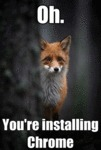Oh. You're Installing Chrome...