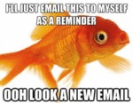 I'll Just Email This To Myself As A Reminder...