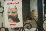 Warning Dog